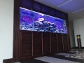 Marine Reef Aquarium - custom fish tanks