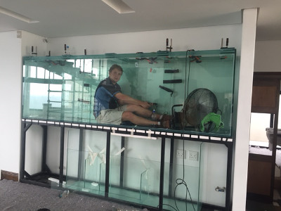 Custom Fish Tanks Amp Aquariums We Build And Maintain Fish